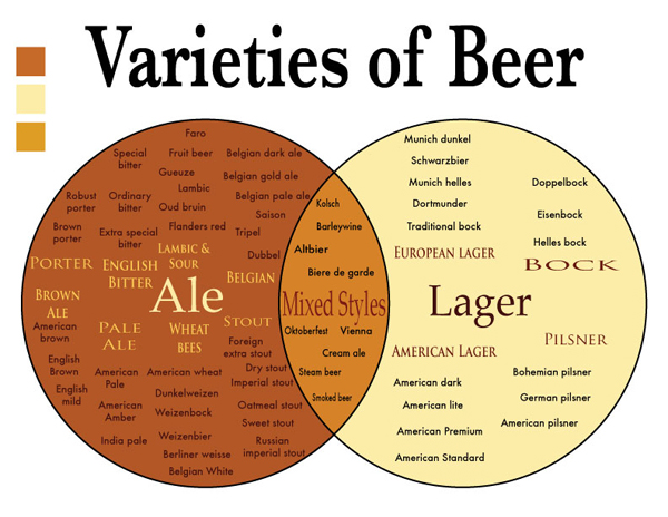 What is the Difference Between an Ale and a Lager?