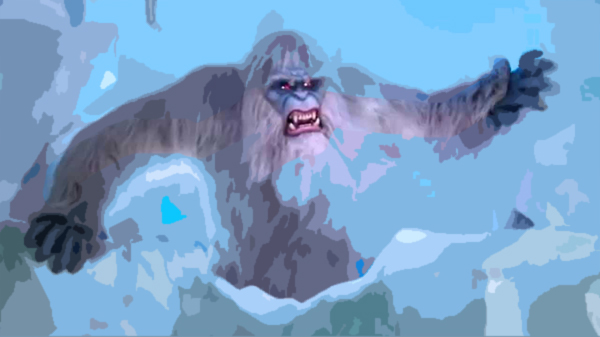 Yeti' Hair? Nothing So Abominable, Scientists Find