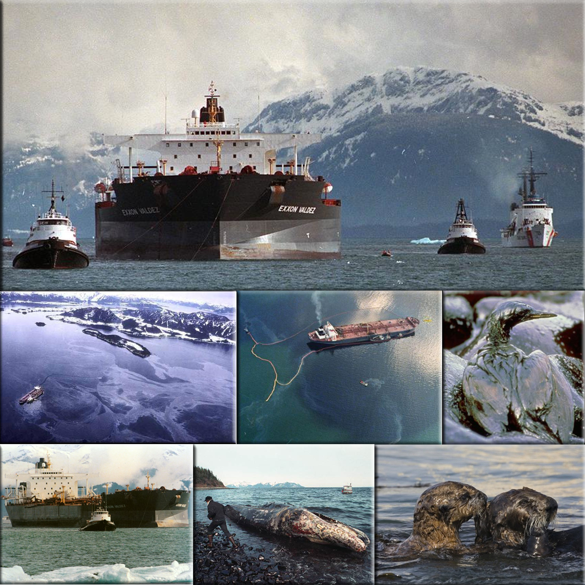 a history of exxon valdez oil spill in 1989 The biggest oil spill in us history sparked improvements in tanker  on march  24, 1989, the supertanker exxon valdez ran aground on bligh.
