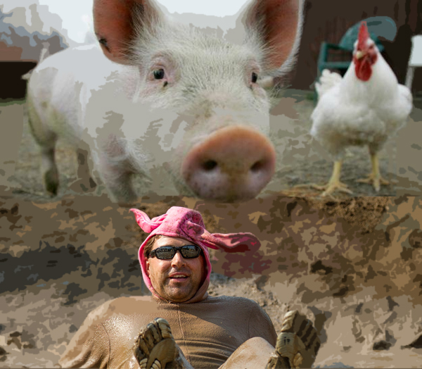 "Animal rights protest scrapped after ""greased pig"" dust-up"