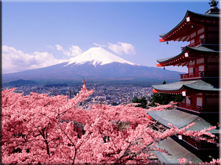 Japan - Tokyo, Mount Fuji, Cherry Blossoms - Japanese macaque - 'Super' Train - Tokyo